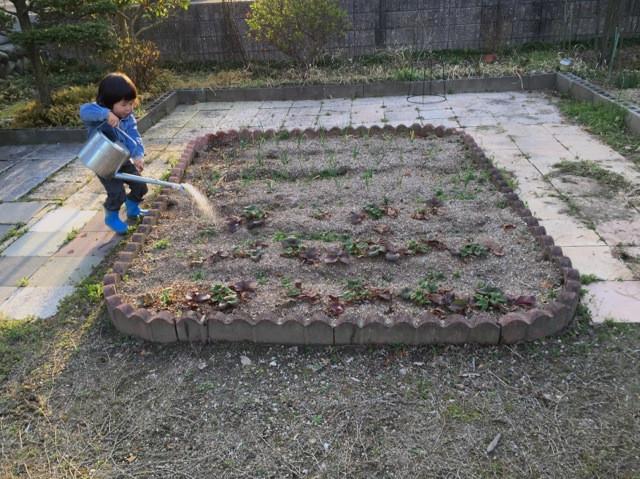 趣味の園芸2.jpg