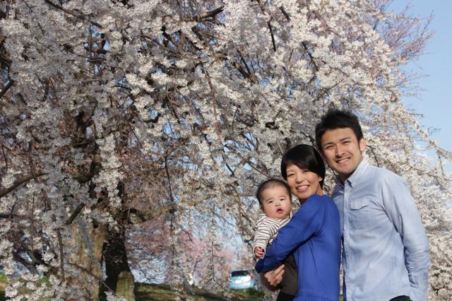 桜の写真。.jpg