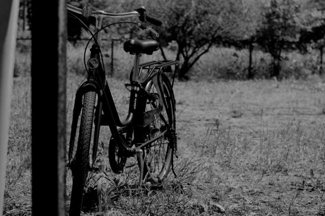 eco 自転車.jpg