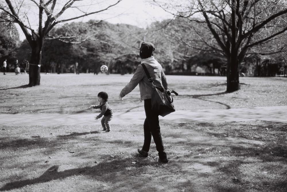 散歩.JPG