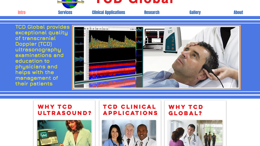 PROJECT: TCD Global