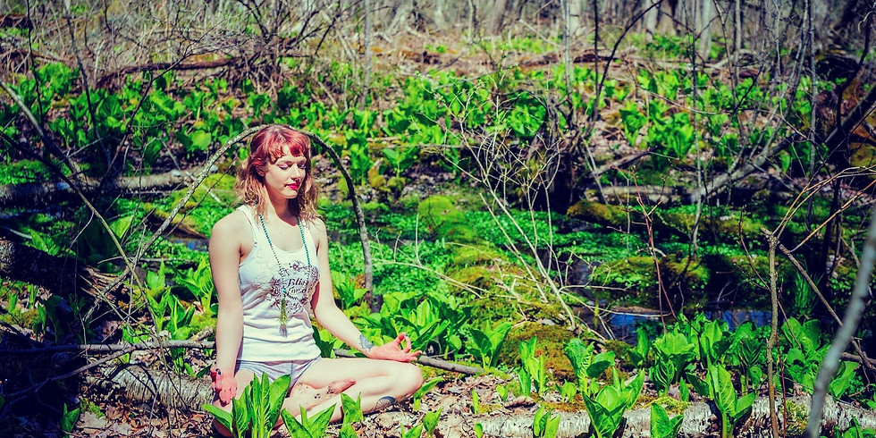 Meditation for Inner Authority with Michelle