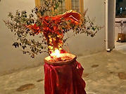 0521_tulsi_vivah_and_puja.jpg