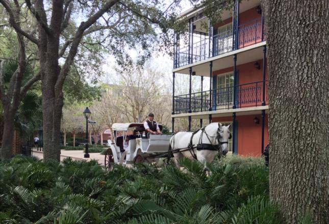 Carriage ride Disney