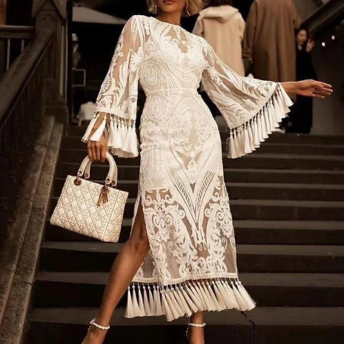 Dana Tassels Embroidery Lace Dress