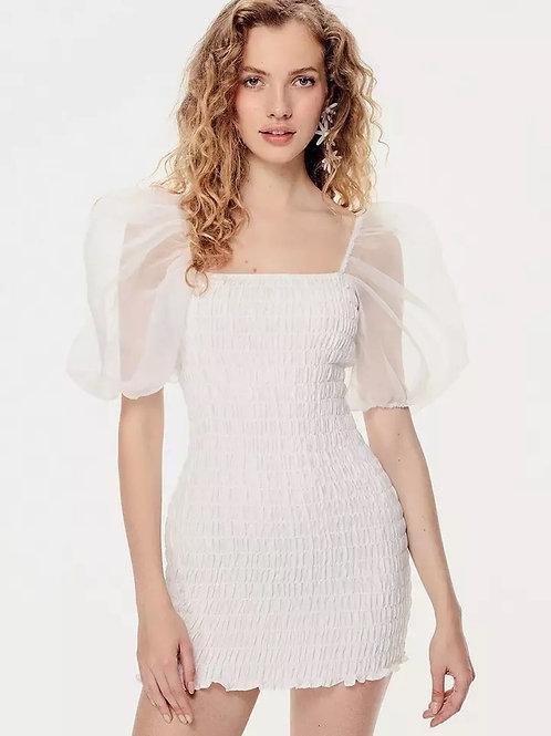 Athena Stylish Chic Ruched Chiffon Dress