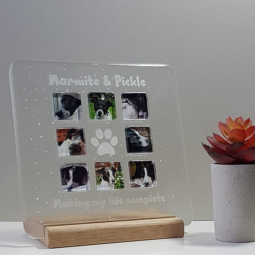 Small Pet Panel