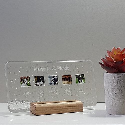 Landscape Pet Panel