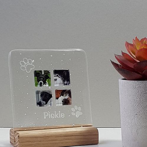 Mini Pet Panel