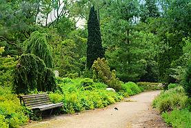 park-4314817_1280.jpg