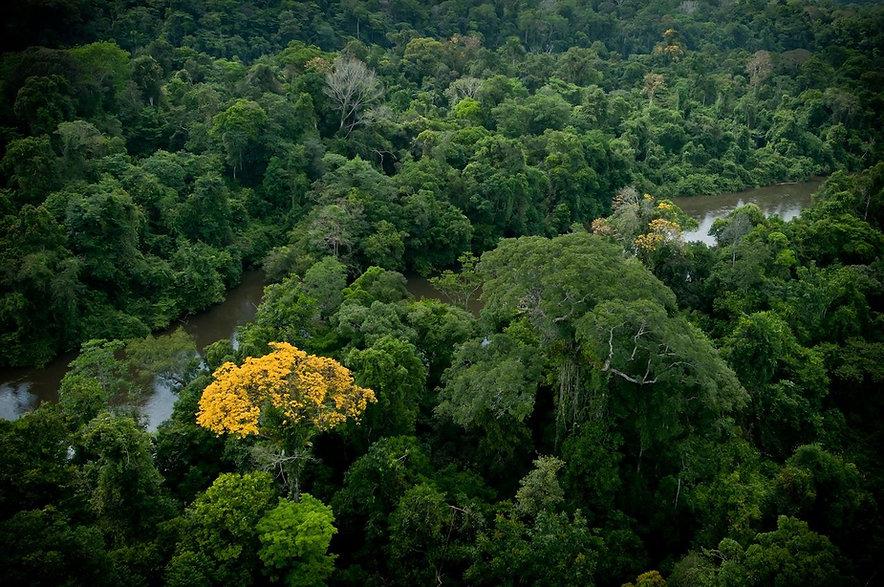 tourisme-guyane-valorise-lecotourisme-fo