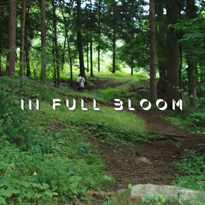 In Full Bloom by Project Feel