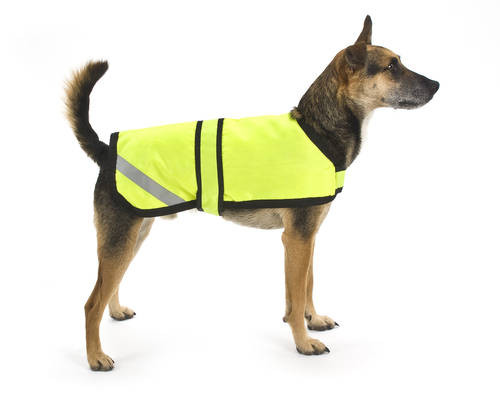 Koer helkurvestiga, pildi allikas: https://www.doggiesolutions.co.uk/high-visibility-reflective-dog-jackets-7563-0.html