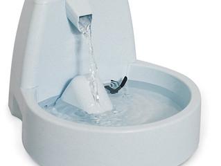 Kassid ja joogivesi