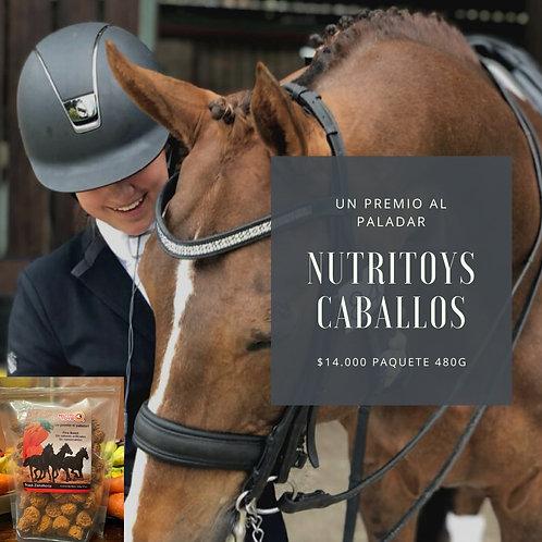 Nutritoys Snacks Caballos con probióticos 480 gramos