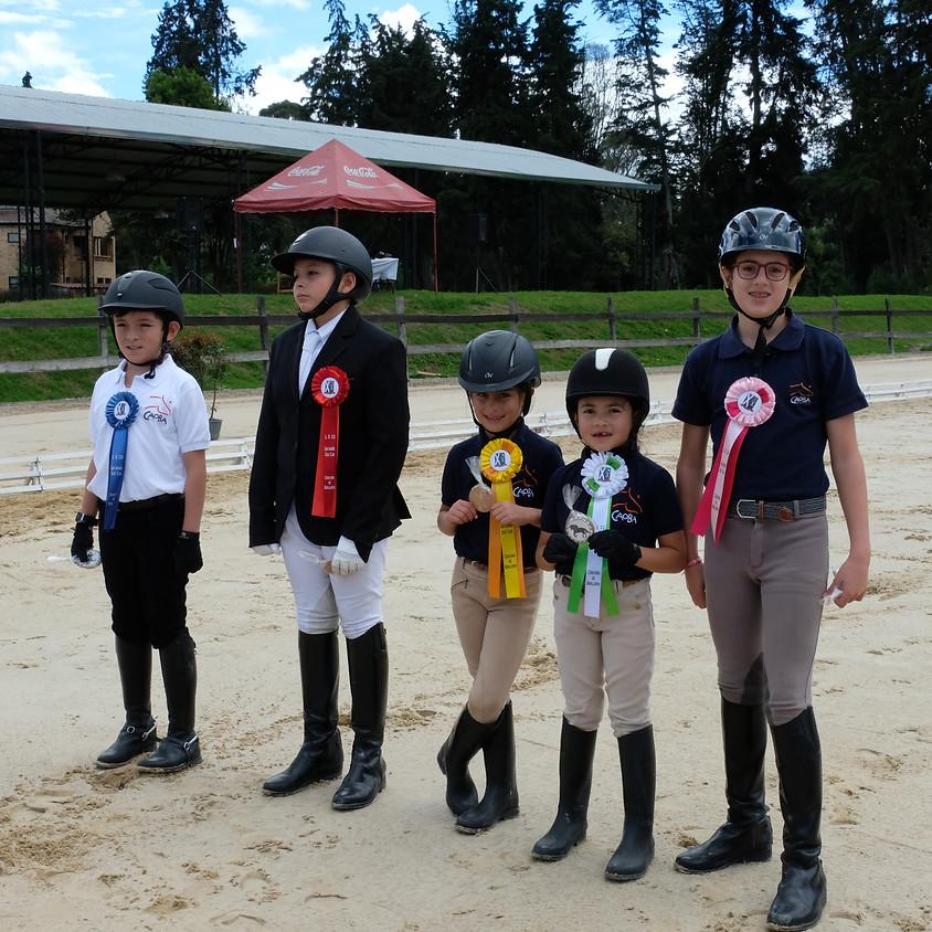 Curso Estructuras de Pony Club y Programa de Galopes (Galops ®)