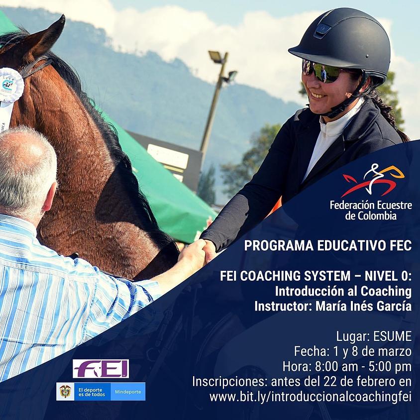 FEI Coaching System - Nivel 0 - Introducción al Coaching