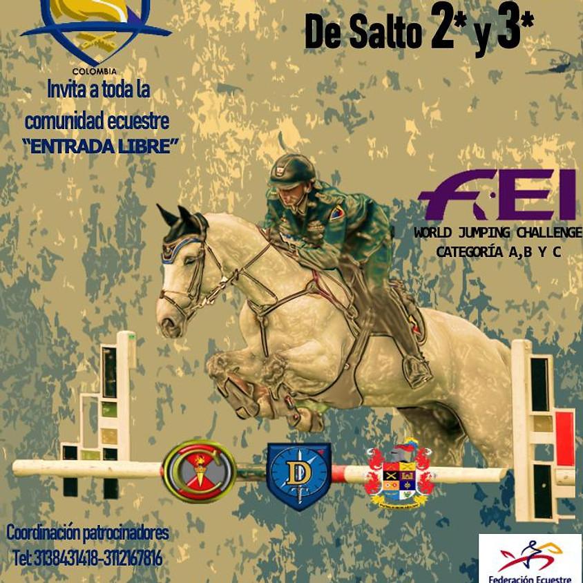 Concurso Nacional de Salto 2* FEI Jumping World Challenge - ESUME