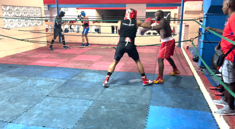 Sparring In Cuba