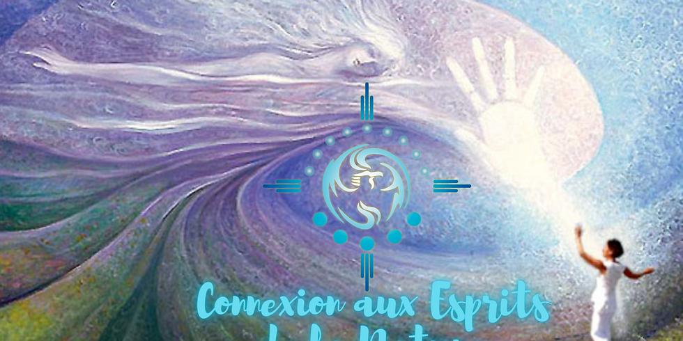 Atelier Connexion Aux Esprits de la Nature.... en nature !