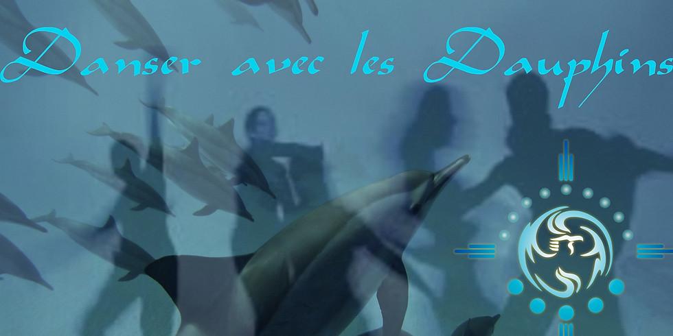 Semaine Danser avec les Dauphins !