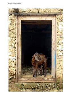 Doors of kathmandu (1)_021