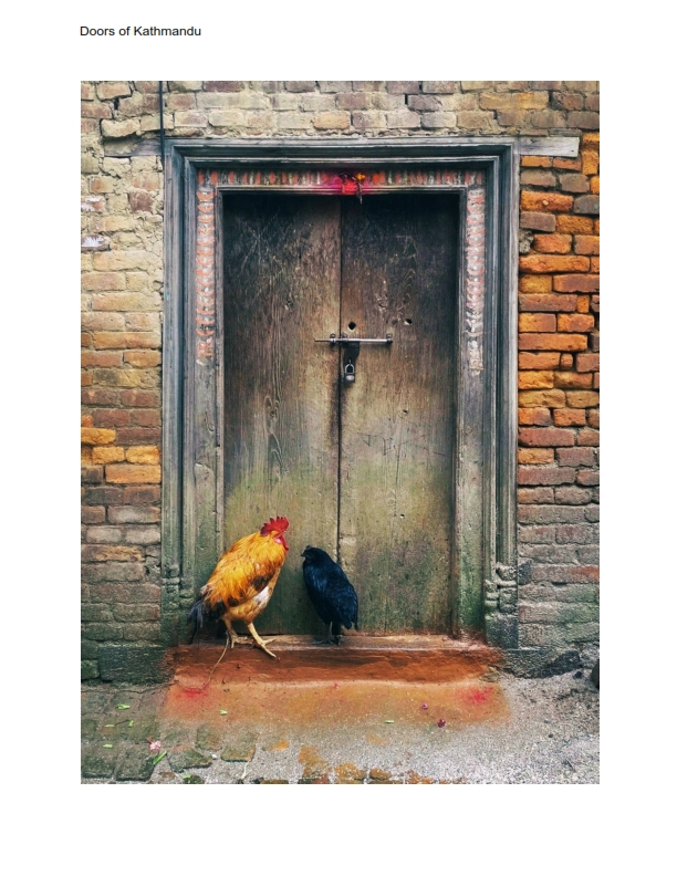 Doors of kathmandu (1)_003