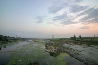 Yamuna flood plains