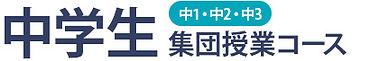course_chu.jpg