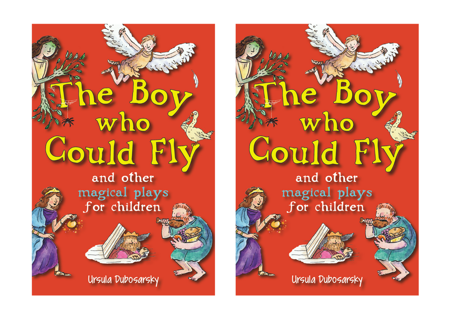Christmas Press - The Boy who Could Fly