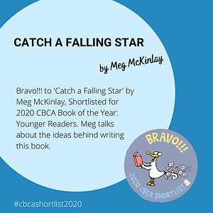2020 - Bravo - N - Catch a Falling Star.