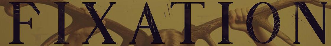 fixation banner website.jpg