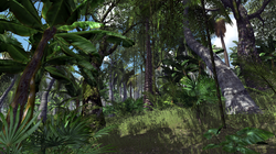 Real Nature Pack - Jungle