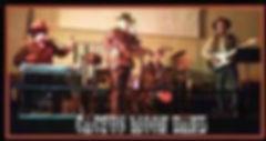 cactus moon band.jpg