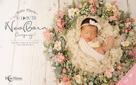 newborncam9月-hp.jpg