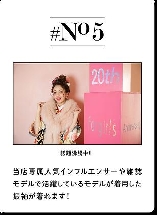 No.5.png