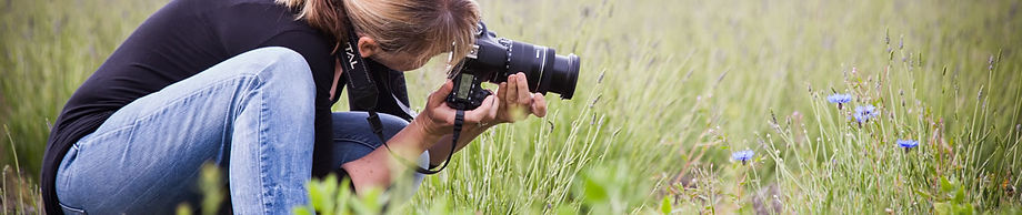 Commercial photography at The Lavender Fields, Hampshire