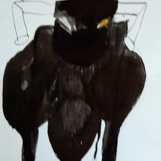 14-30 zwarte stier.JPG