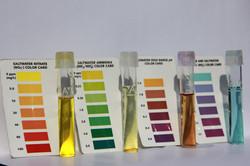 The Chem Tests