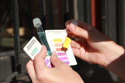 Determining Chem Levels in Color
