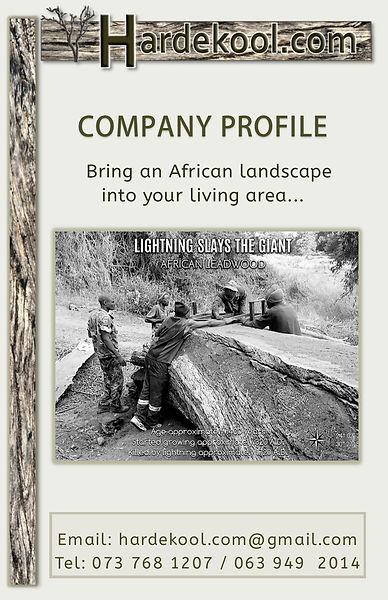 company pdf1.jpg