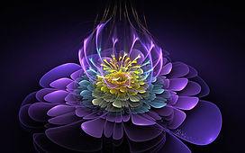 blooming-essence.jpg