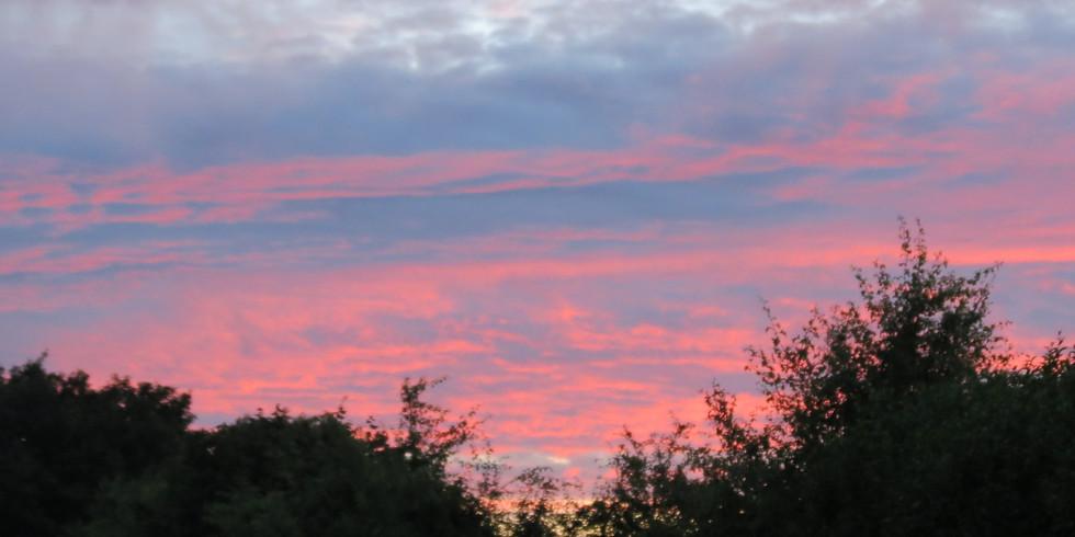 Colchester Cemetery & Bourne Valley Bat Evening