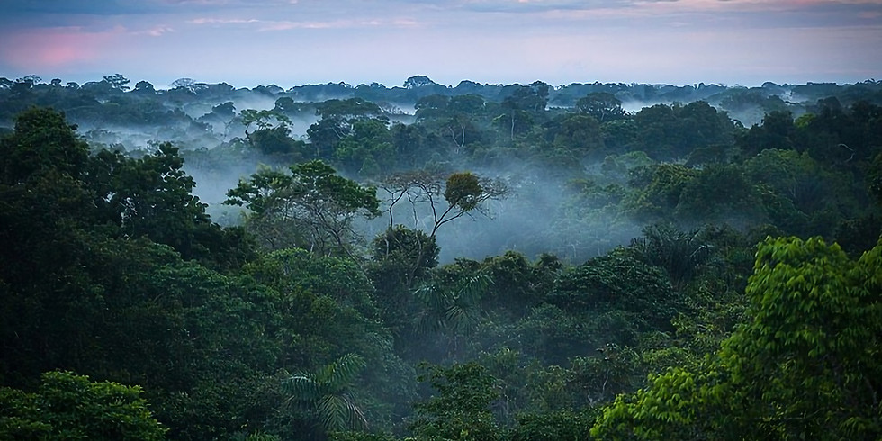 Adventures into the Amazon talk - Christine Lavelle