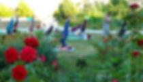 P1060450_edited.jpg
