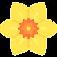 daffodil-pngrepo-com.png