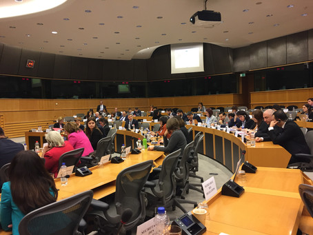 Updates on the TB Platform of the Euronest Parliamentary Assembly