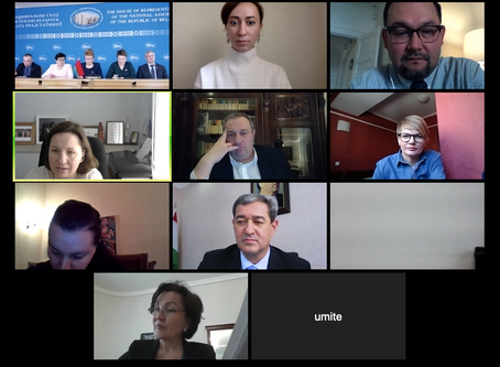 Heads of EECA national caucuses gather online to address COVID-19 and TB
