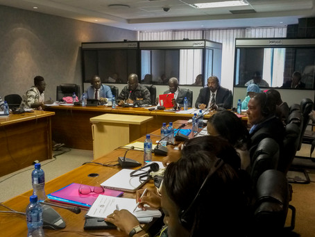 Pan Africa Parliamentarians unite to End TB