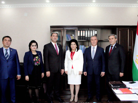 Tajikistan adopts a national resolution on TB